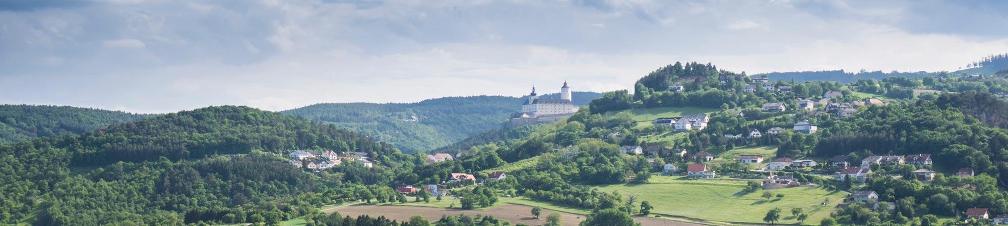 Gemeinde-Forchtenstein-06