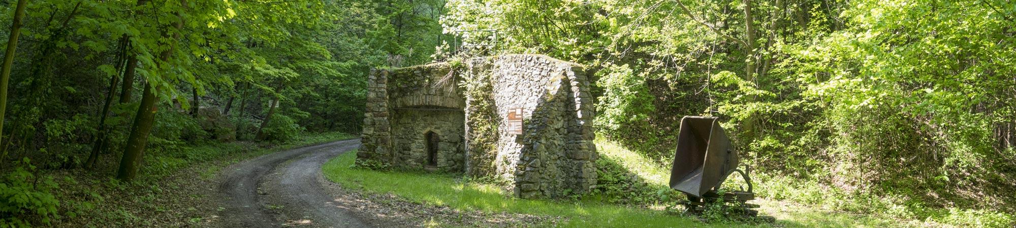 Gemeinde-Forchtenstein-08