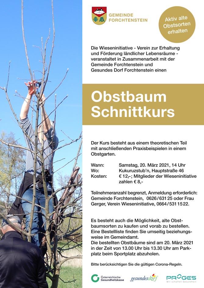 Obstbaumschnittkurs-Flugblatt